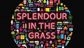 Splendour-in-the-grass-2016